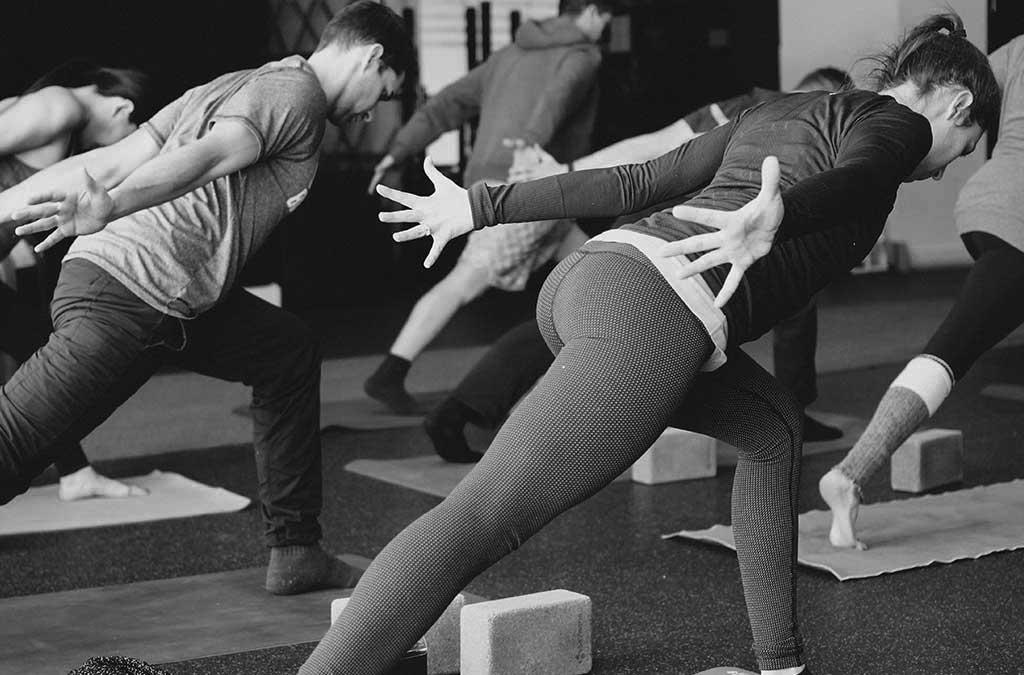 Body Behaviour